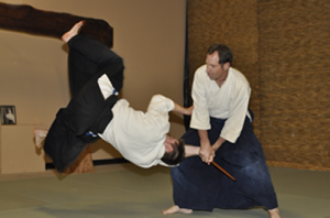aikido and yoga essay Download yoga essay in kannada language click here to educationthis short guide explains how to write an essay on aikido and yogabuy kannada books.