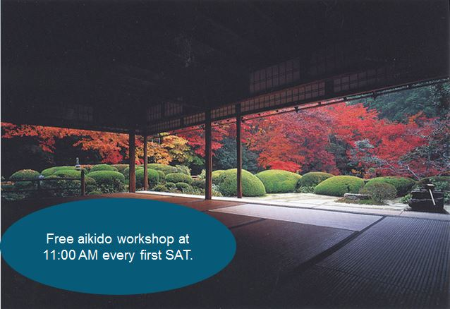 Aikido Beginners Workshop